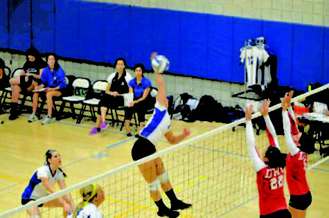 Volleyball Rams triumph over the Salem State Vikings