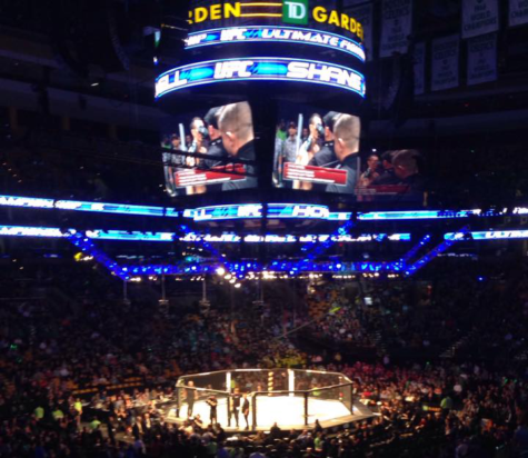 UFC Fight Night 59: The Octagon thrills Boston