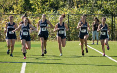 Cross country teams' rosters running on fumes