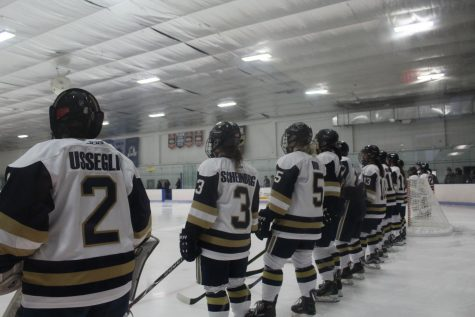 Hockey completes season, places ninth in conference