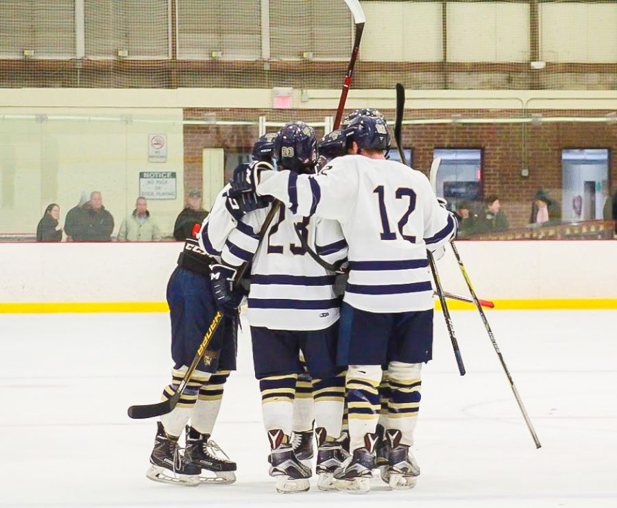 Men's hockey laces up for first season in NEHC