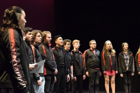 Ramifications perform at a cappella competition