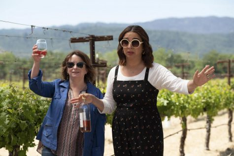Star-studded cast and comical screenplay in 'Wine Country' will leave viewers chuckling