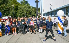 Fan Fest brings together Suffolk community