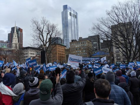 Eddie Reinhardt Sanders supporters crowded the Boston Common Saturday afternoon