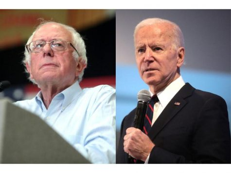 (From right) Vermont Sen. Bernine Sanders and former Vice President Joe Biden are still vying for the Democratic nomination as cases of coronavirus continue to break out across the country.