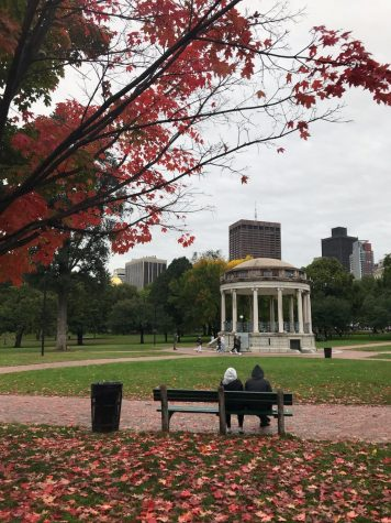 Fall in Boston Common