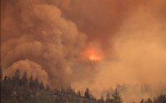 Image courtesy of Bureau of Land Management Oregon and Washington