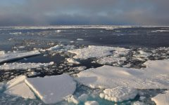 Arctic ice lays adrift in the open water.