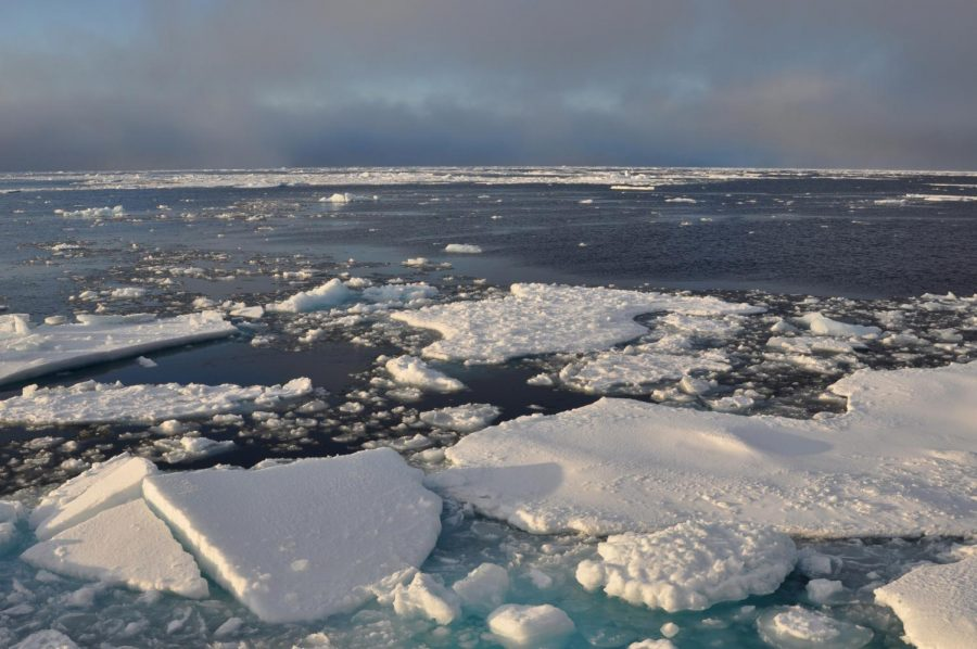 Arctic+ice+lays+adrift+in+the+open+water.