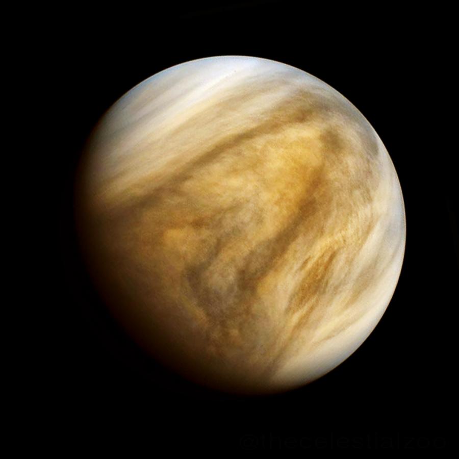 A+close-up+shot+of+planet+Venus.