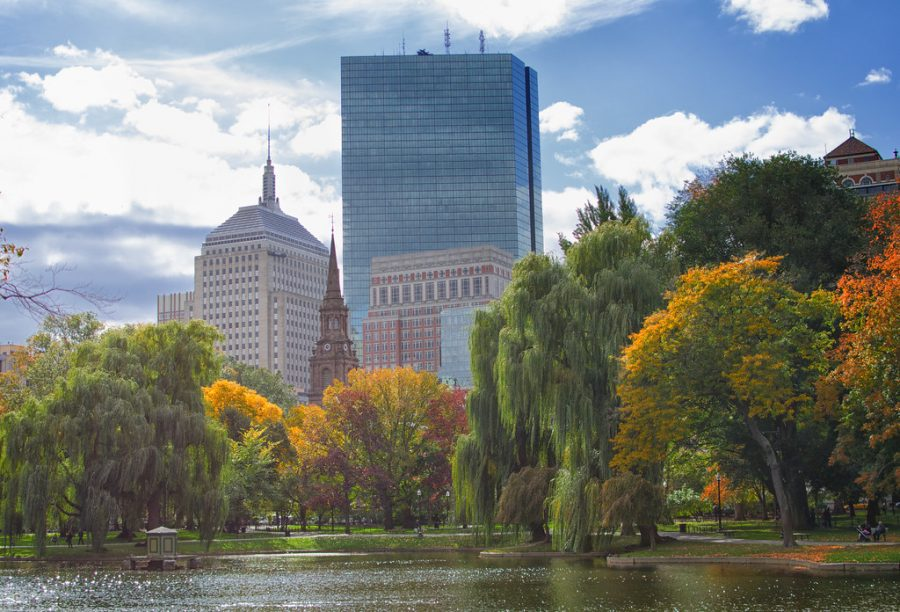 The Boston Public Garden shows off its fall colors.