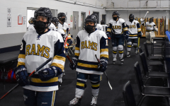 Women's hockey loses two close games to Endicott, drops to 1-2