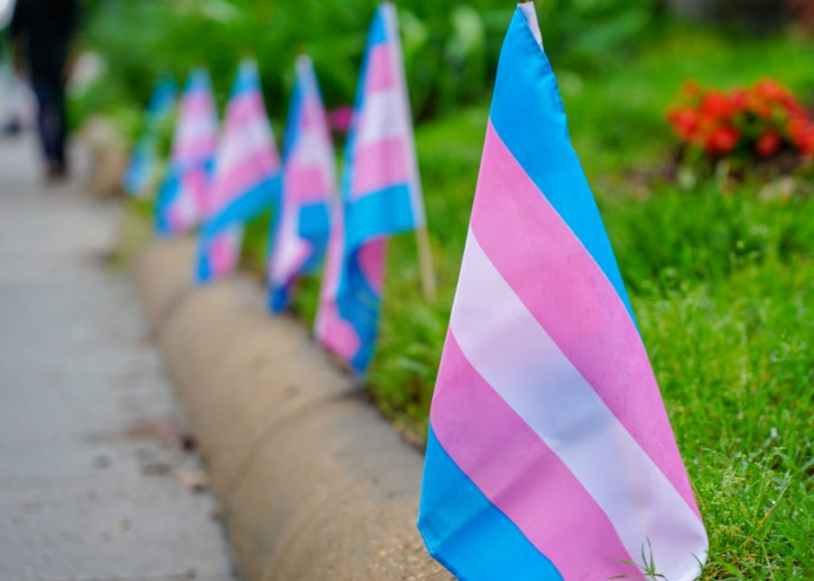 QSU+panel+shines+light+on+Transgender+Awareness+Day