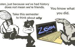 Zoom Beef